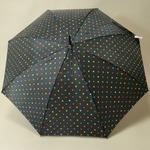 parapluiepoiscolore2