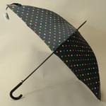 parapluiepoiscolore3