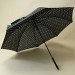 parapluiepoiscolore4