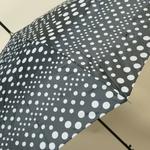 parapluiepoisblanc5