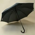 parapluiepetitpois2