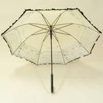 parapluiefroufrouparisb4