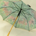 parapluiedamadama5