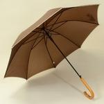 parapluiebrownwood2