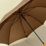 parapluiebrownwood5