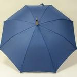 parapluiebluewood2