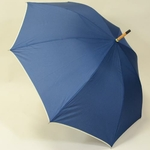 parapluiebluewood3