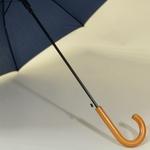 parapluiebluewood5