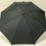 parapluieblackwood4