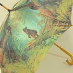 parapluieoursbrun5