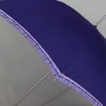 parapluiedreamer4