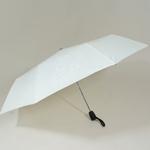 parapluieminifirework2