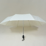 parapluieminifirework4