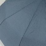parapluieminigentleman5