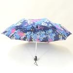 parapluieminiprintempsIII1
