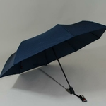 parapluiephilabluestar1