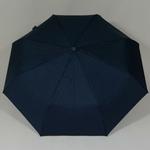 parapluiephilabluestar2