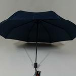 parapluiephilabluestar3
