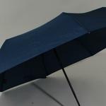parapluiephilabluestar4
