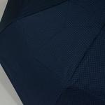 parapluiephilabluestar5