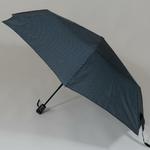 parapluiephilagrey2