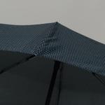 parapluiephilagrey5