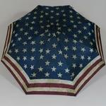 parapluieminiusa1
