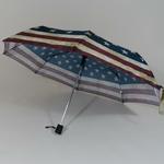 parapluieminiusa3
