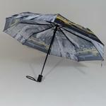 parapluieminitaxi3