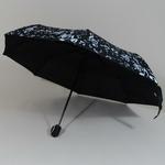 parapluieminimusical1