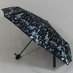 parapluieminimusical2