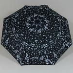 parapluieminimusical3