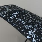 parapluieminimusical5