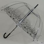 parapluieparistransparent1