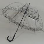 parapluieparistransparent2