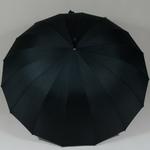 parapluienumero161
