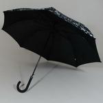 parapluiemusical3