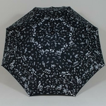 parapluiemusical4