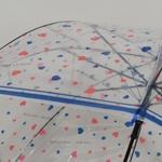 parapluieiloverain5