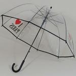 parapluieiloveparis2