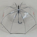 parapluieiloveparis3