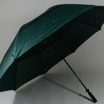 parapluiegolfvert2