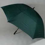 parapluiegolfvert1
