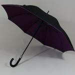 parapluiedoublepurple1