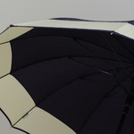 parapluiedomeviolet5