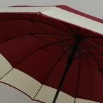 parapluiedomerouge5