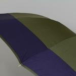 parapluiedomekaki4