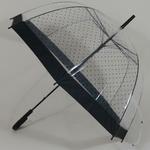 parapluiebubblelady1