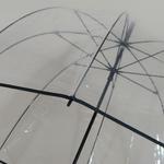 parapluiebigbubble5