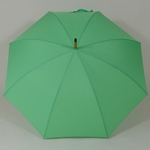 parapluievertcitron3